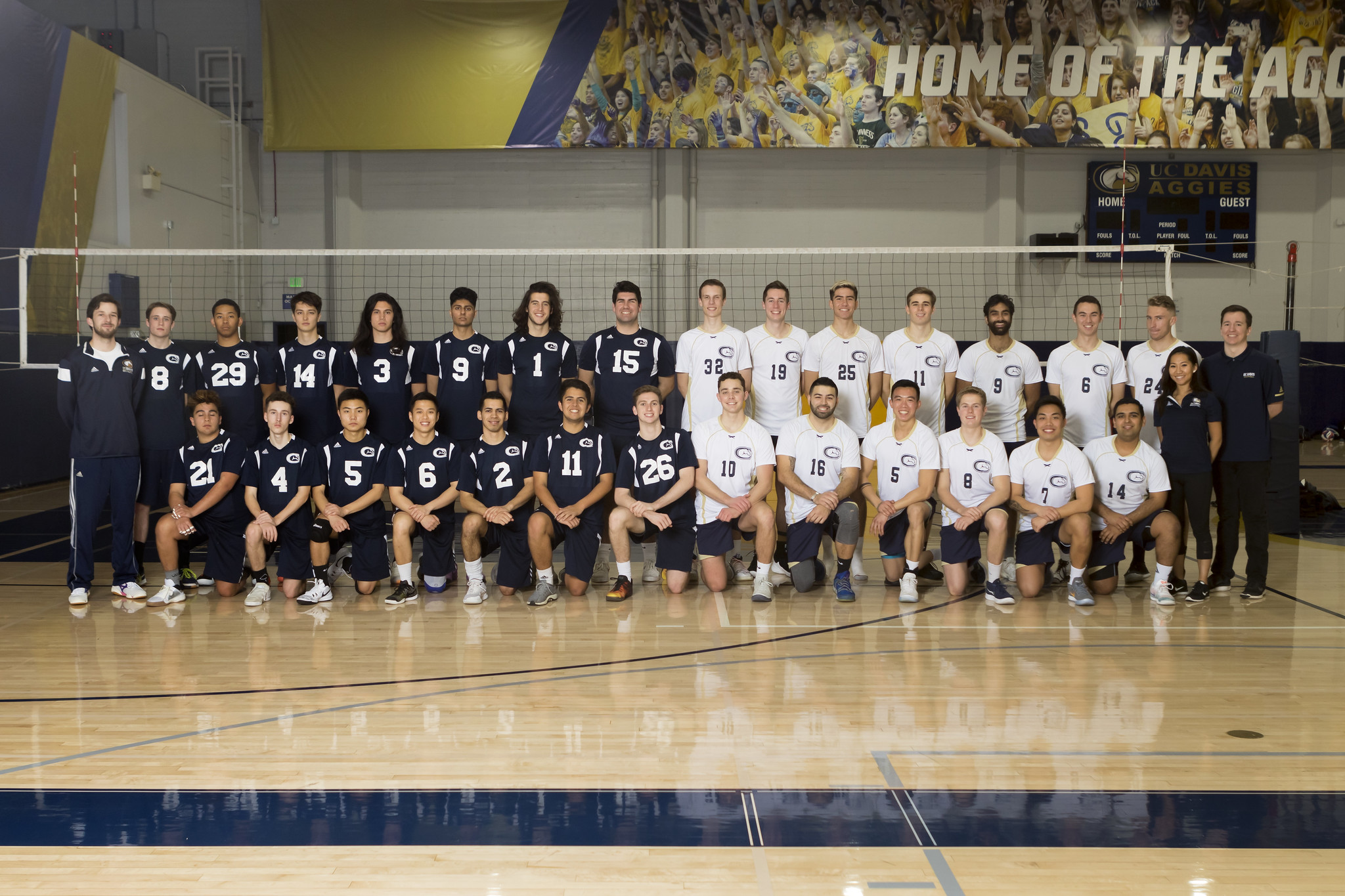 mens volleyball team photo